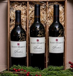 Scott Harvey J&S Reserve Barbera, Amador County - Vertical